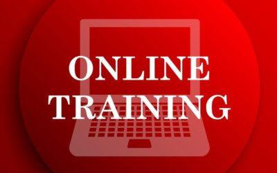 Karate-Online-Training ab Freitag, 22.01.2021